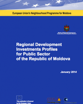 Regional Development Investments Profiles for P...